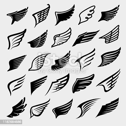 Collection wings set, edit size and color, vector