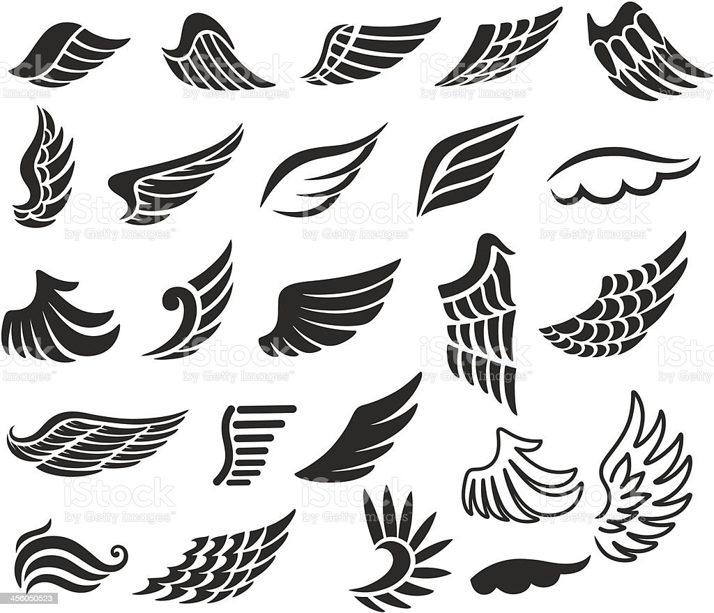 Wings. Set of  design elements. vector art illustration