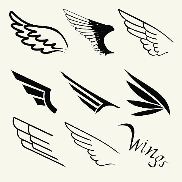 Wings set on white background, vector Wings set on white background, vector aircraft wing stock illustrations