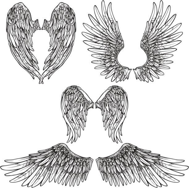 Flügel gesetzt – Vektorgrafik