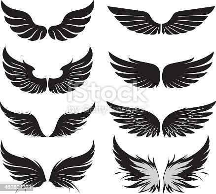 Set of wings. Vector illustration.