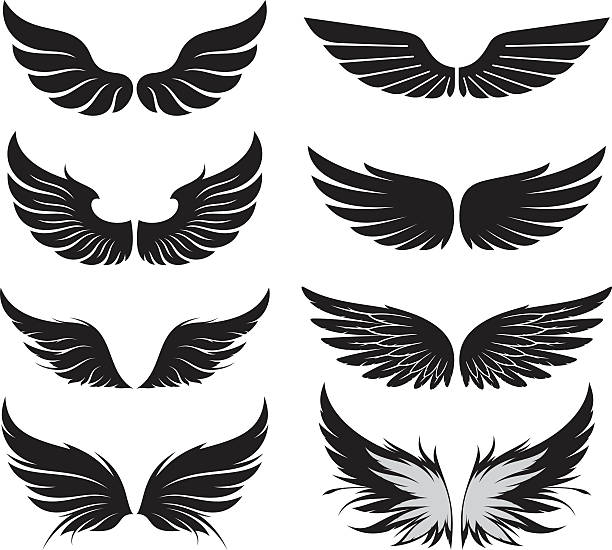 wings-set - vogel tattoos stock-grafiken, -clipart, -cartoons und -symbole