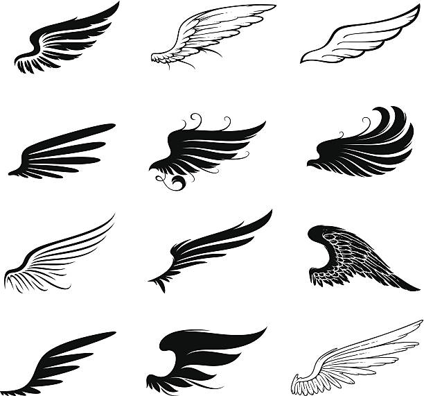 illustrations, cliparts, dessins animés et icônes de ensemble d'ailes - tatouages d'anges