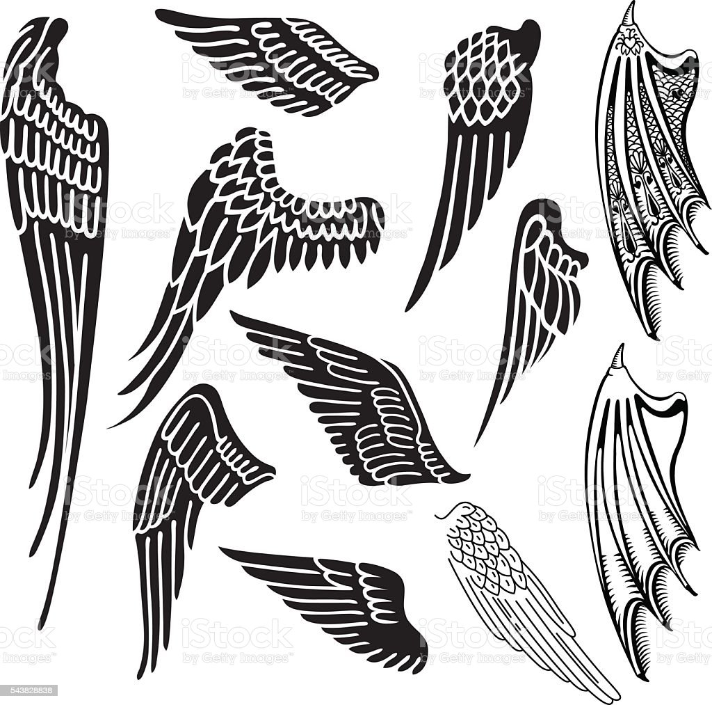 Wings set vector art illustration