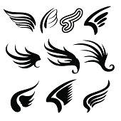 Wings set vector  illustration