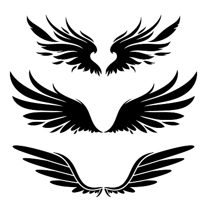 wings silhouette design elements