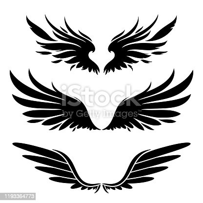 wings black silhouette design elements set