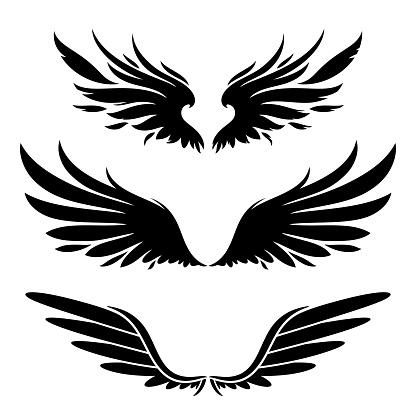 wings black silhouette design elements set