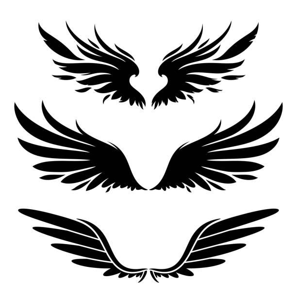 機翼剪影設計項目 - 動物翅膀 幅插畫檔、美工圖案、卡通及圖標
