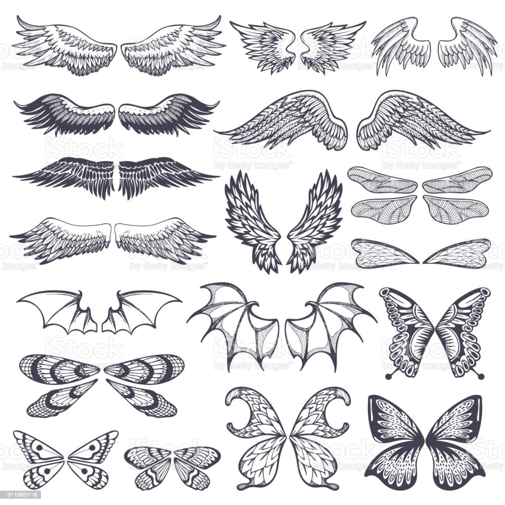 Wings vector flying winged angel with wing-case of bird and butterfly with wingspan illustration black wing-beat tattoo silhouette set isolated on white background vector art illustration
