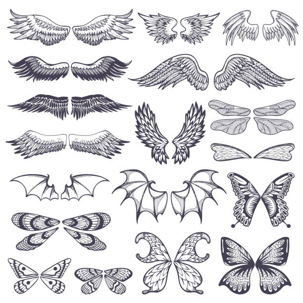 wings vector flying winged angel with wing-case of bird and butterfly with wingspan illustration black wing-beat tattoo silhouette set isolated on white background - bat stock illustrations