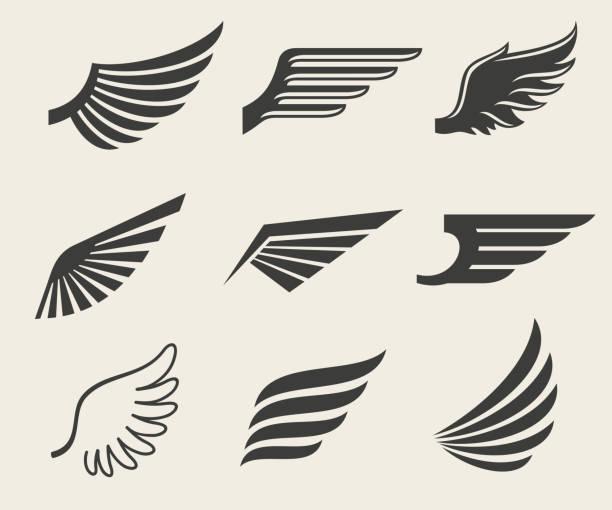 Vector de conjunto de iconos de alas - ilustración de arte vectorial