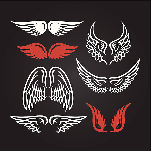 Wings vector art illustration