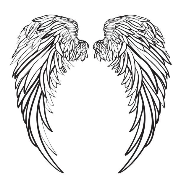 ilustraciones, imágenes clip art, dibujos animados e iconos de stock de las alas. ilustración de vector sobre fondo blanco. estilo blanco y negro - tatuajes de ángeles
