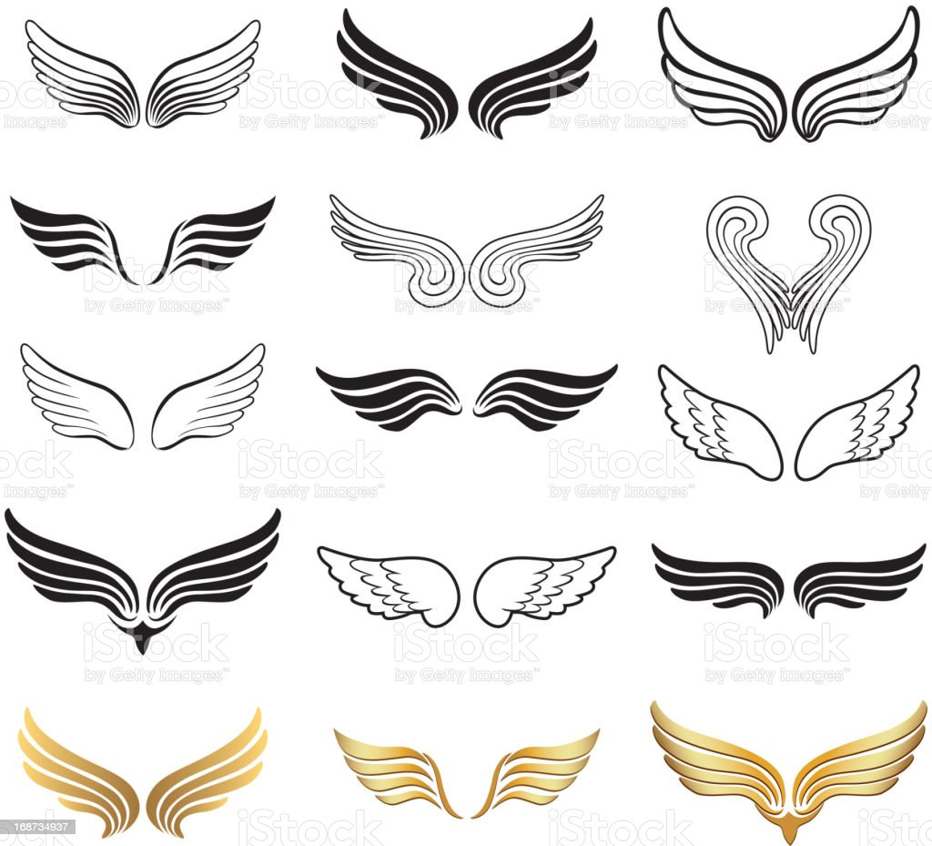 Wings Vector Set. vector art illustration