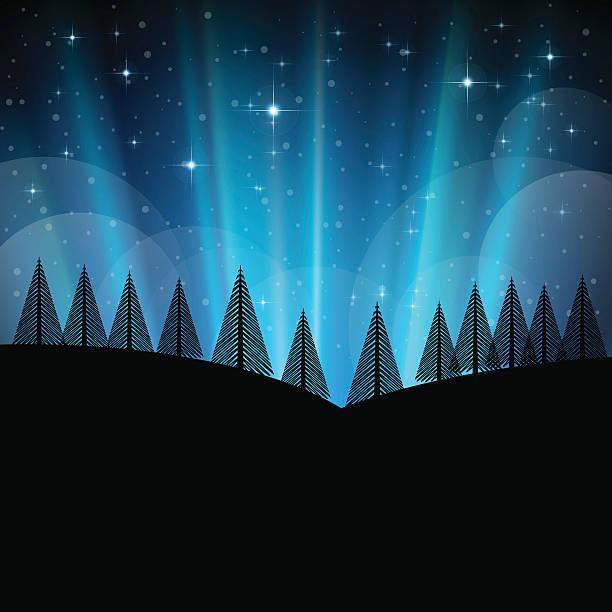 Paisagem de inverno e de Natal com neve e árvores à noite - ilustração de arte em vetor