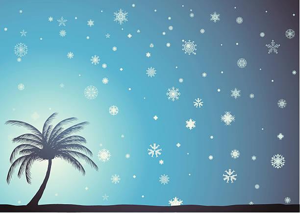winter am strand. - schneeflocke sonnenaufgang stock-grafiken, -clipart, -cartoons und -symbole