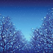 "This illustration is a background of ""Blue illumination and Deciduous trees""."