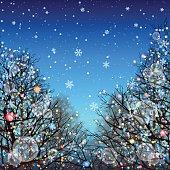 Winter background[Illumination and Deciduous trees]