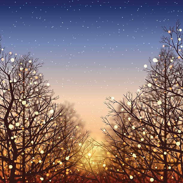 winter background[illumination and sunset] - light through trees stock illustrations