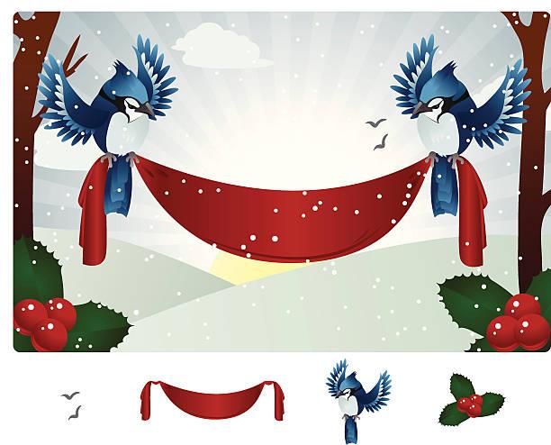 winter-blue jay banner - schneeflocke sonnenaufgang stock-grafiken, -clipart, -cartoons und -symbole