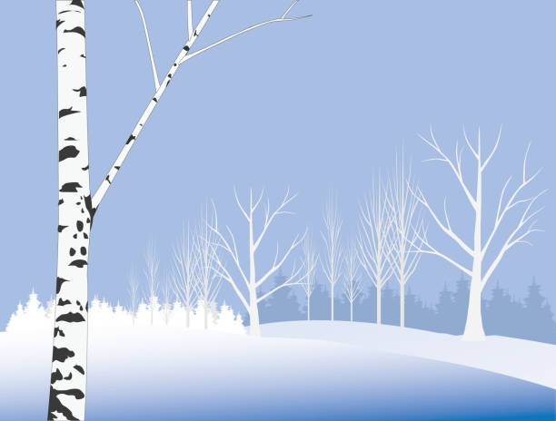 Winter day - Illustration Winter deciduous forest black white snow scene silhouette stock illustrations