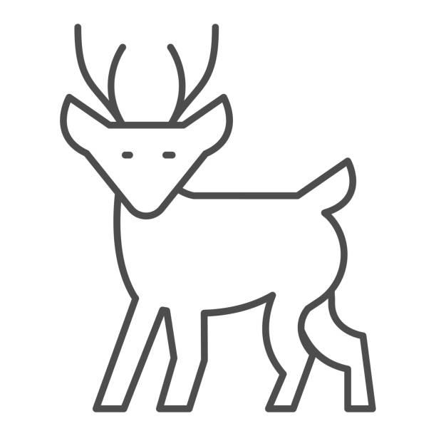 ilustraciones, imágenes clip art, dibujos animados e iconos de stock de icono de línea delgada de ciervo de invierno, concepto de navidad, signo de cervatillo sobre fondo blanco, icono de reno de navidad en estilo de esquema para el concepto móvil y el diseño web. gráficos vectoriales. - hueva