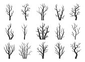 Winter dry trees. Naked wintered tree silhouettes vector illustration, black autumn dead wood plants with branches collection isolated on white background