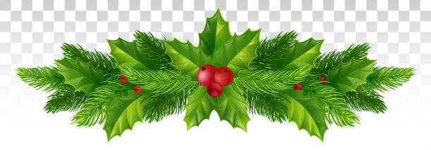 stockillustraties, clipart, cartoons en iconen met winter feestelijk decor van de kerstboom takken en holly verlaat met rode bessen. vectorillustratie. eps-10. - bessen