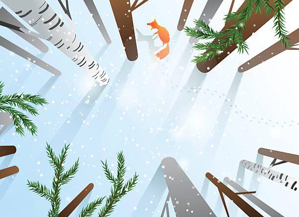 森林の冬の視点 - 森林 俯瞰点のイラスト素材/クリップアート素材/マンガ素材/アイコン素材