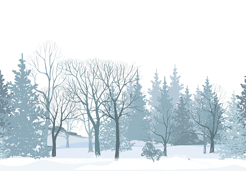 Winter forest seamless wallpaper. Park alleyway over snow