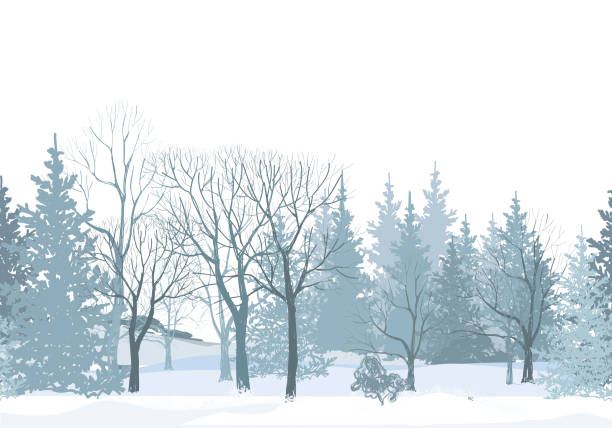 Winter forest seamless wallpaper. Park alleyway over snow vector art illustration