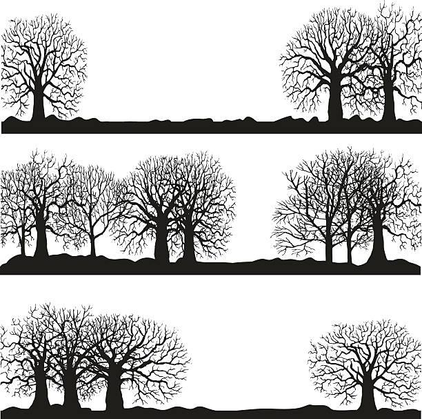 stockillustraties, clipart, cartoons en iconen met winter forest silhouettes lanscapes - mens gemaakte ruimtes