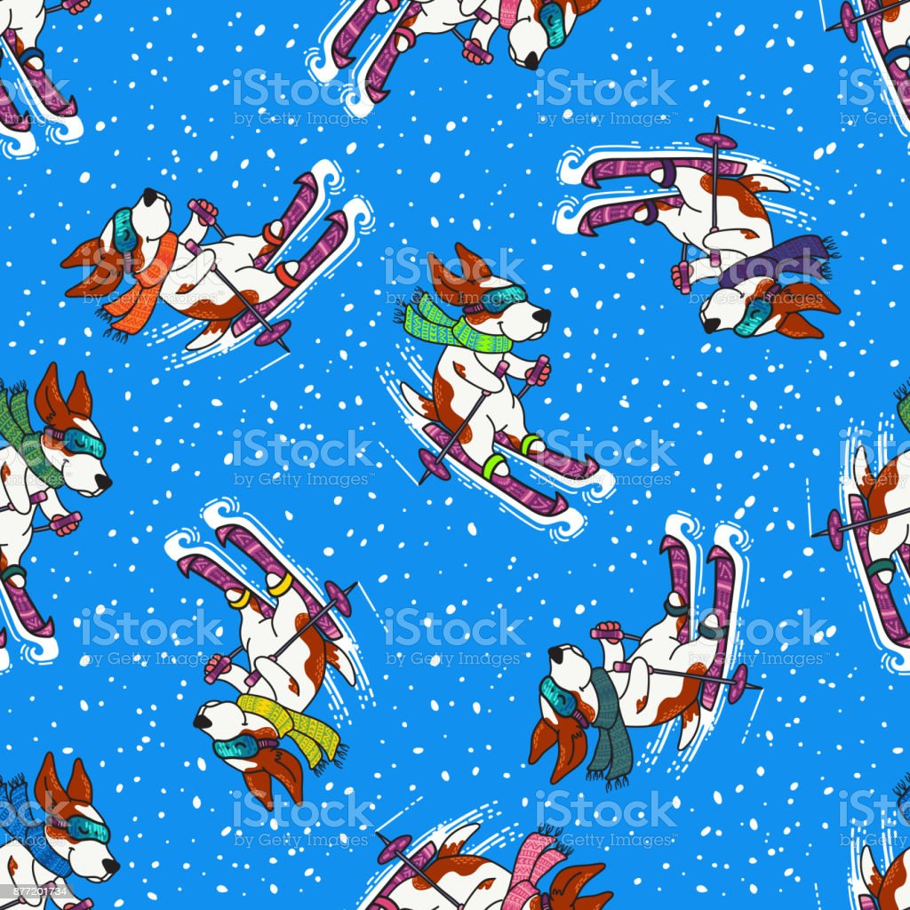 Winter greeting design with dogs in colorful sweaters are skiing vector art illustration