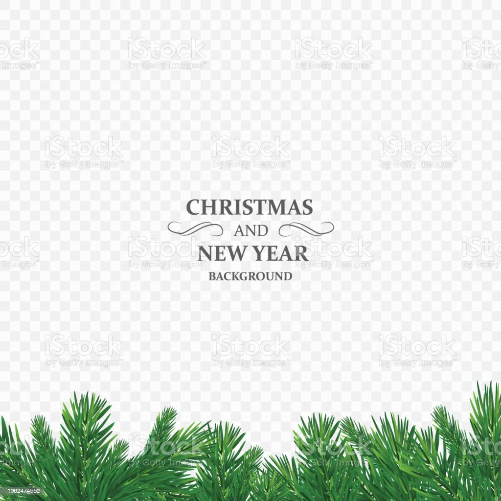 winter holiday background border with christmas tree branch isolated on transparent background he is