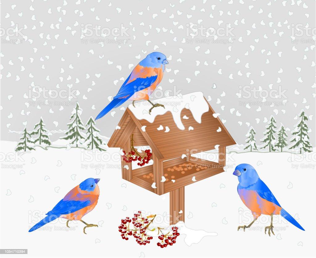 Winter Landschaft Wald Mit Schnee Und Bluebirds Mit Feeder ...