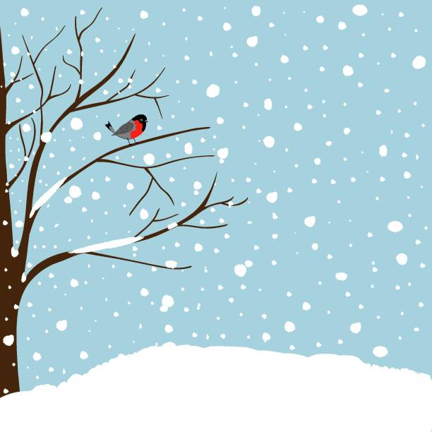 Winter Landscape Scene. Christmas New Year Greeting Card. Forest Falling Snow Red Capped Robin Bird Sitting on Tree. Blue Sky Copy Space vector art illustration