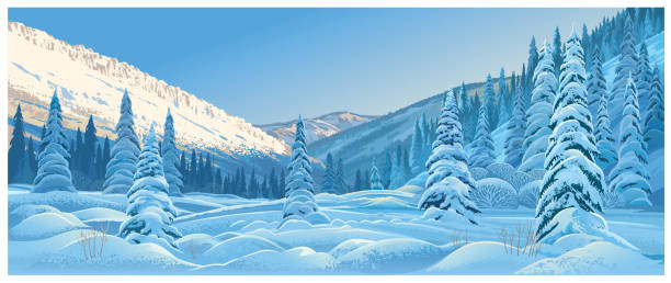 Winter landscape. Winter mountain landscape with snowdrifts and snowy fir trees. arctic stock illustrations