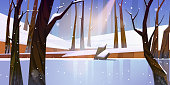 Winter landscape with frozen lake in forest, white snow and trees. Vector cartoon illustration of snowy wood or natural park with ice rink, stump and sun ray. Frozen water of river or pond in forest