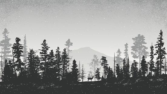 Winter Landscape with Pine Trees clipart
