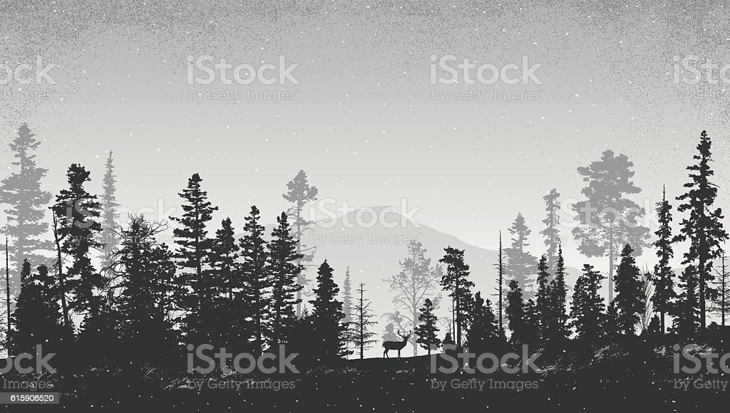 Winter Landscape with Pine Trees vector art illustration