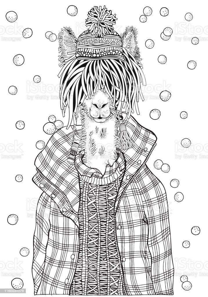 Kis Lama Bir Damali Ceket Yetiskin Boyama Kitabi Sayfasi El Cizimi
