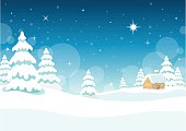 winter,night,snow,star,landscape