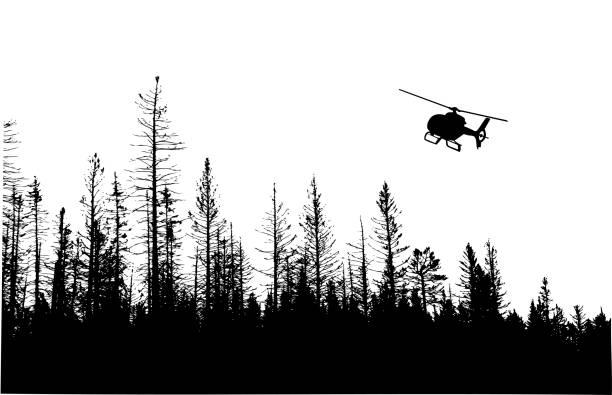 Winter Pines Treeline vector art illustration