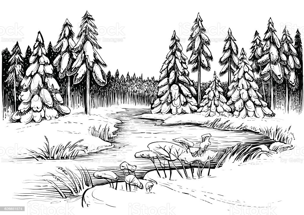 Line Drawing River : Winter river under ice and conifer forest vector drawing