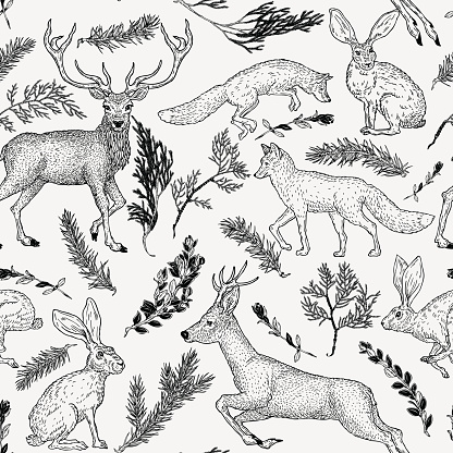 Winter seamless pattern with deer, fox, hare and evergreen plants in vintage style. Hand drawn decoration for paper, textile, wrapping decoration, scrap-booking, t-shirt, cards.