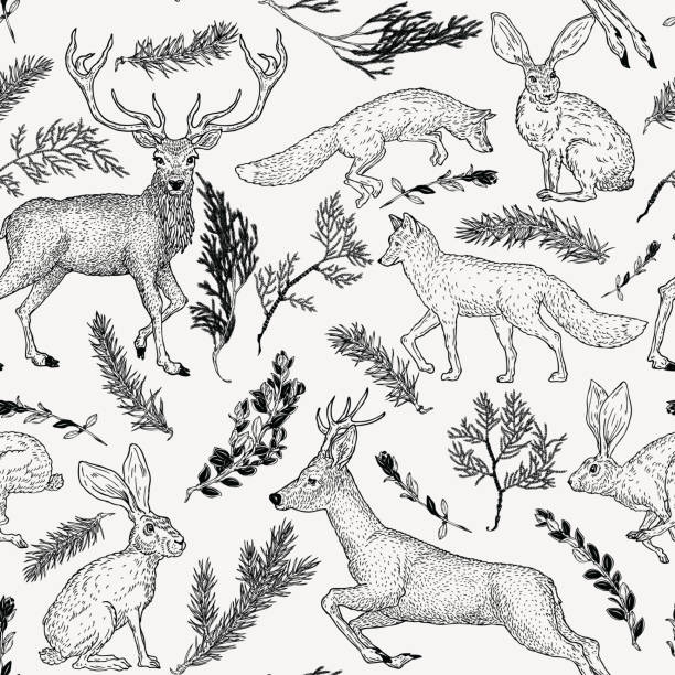 ilustrações de stock, clip art, desenhos animados e ícones de winter seamless pattern with deer, fox, hare and evergreen plants in vintage style. hand drawn decoration for paper, textile, wrapping decoration, scrap-booking, t-shirt, cards. - raposa cão selvagem