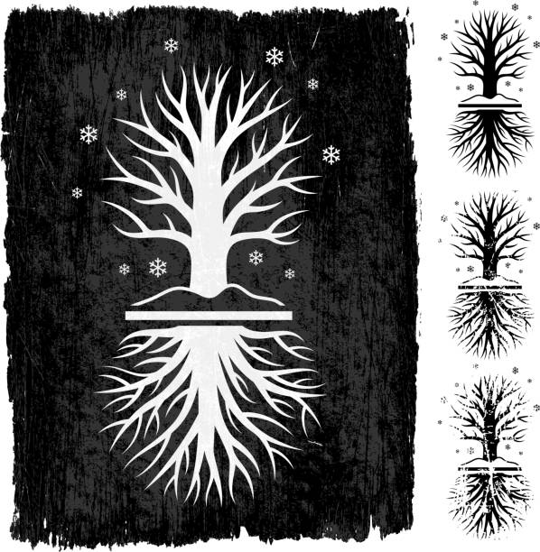 Winter Tree Grunge royalty free vector icon set Winter Tree Grunge Icon Set root hair stock illustrations