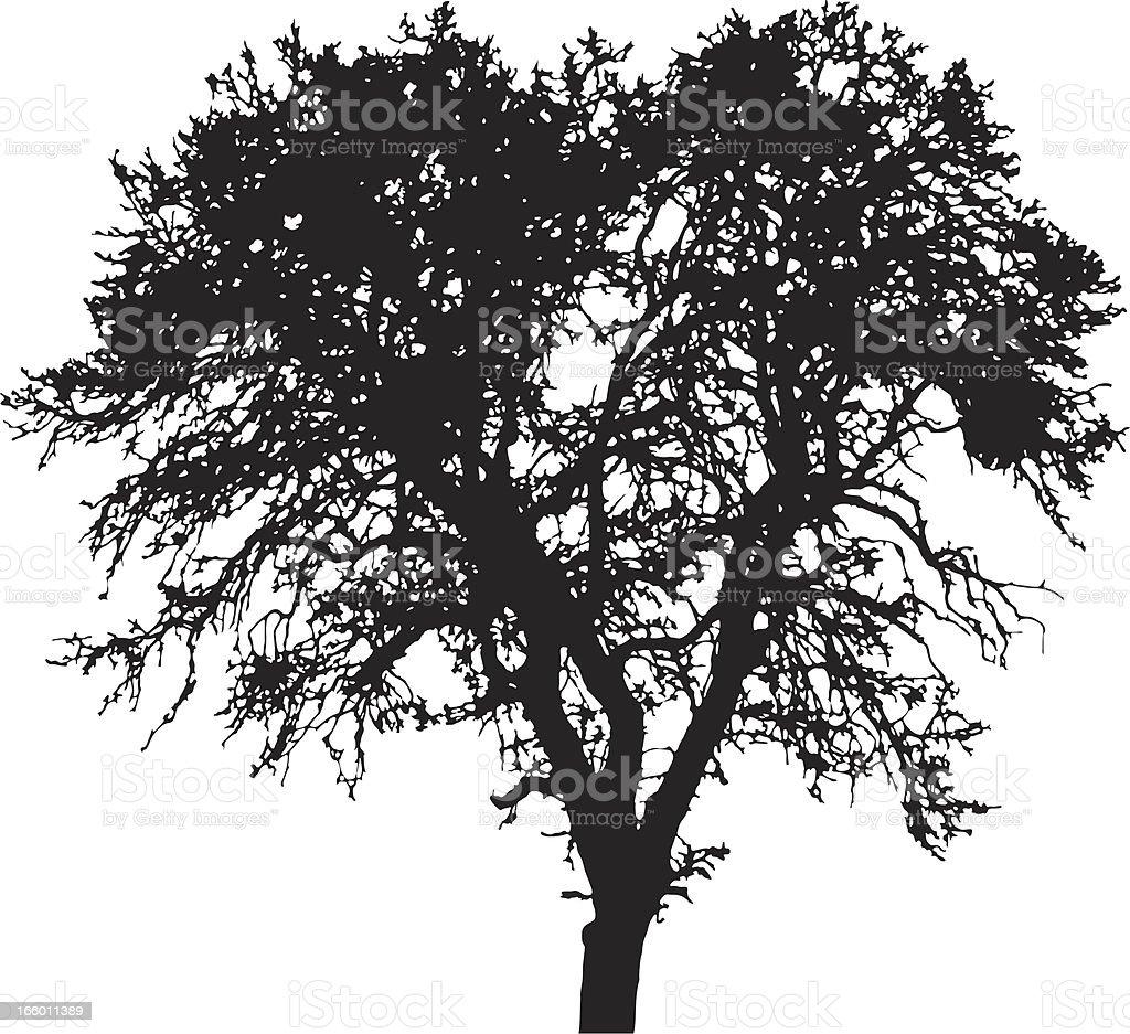 Winter Tree silhouette, vector royalty-free stock vector art