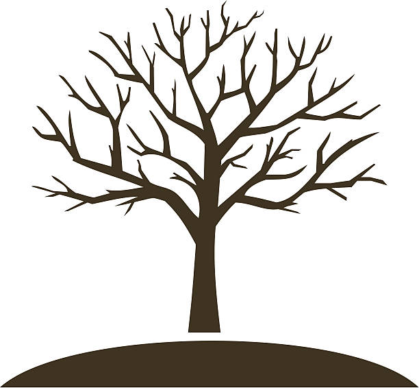 Best Bare Tree Illustrations, Royalty-Free Vector Graphics ...